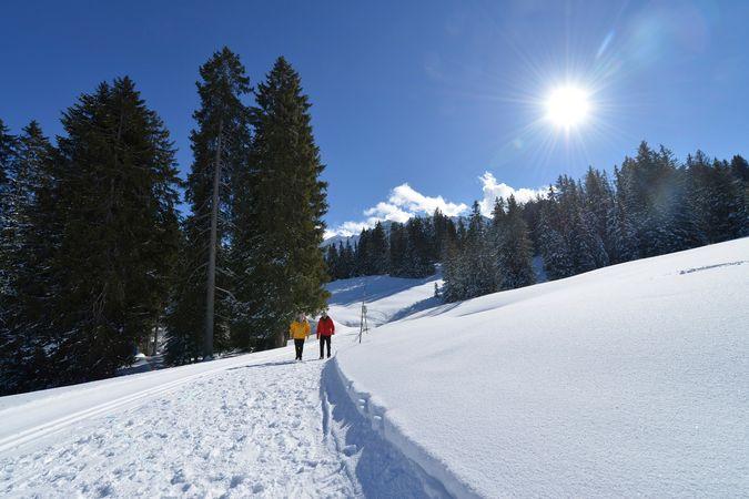 Winterwanderung Rossweid - Schwarzenegg - Rossweid in Sörenberg