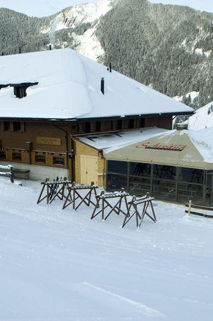 Skihütte & Alphotel Schwand