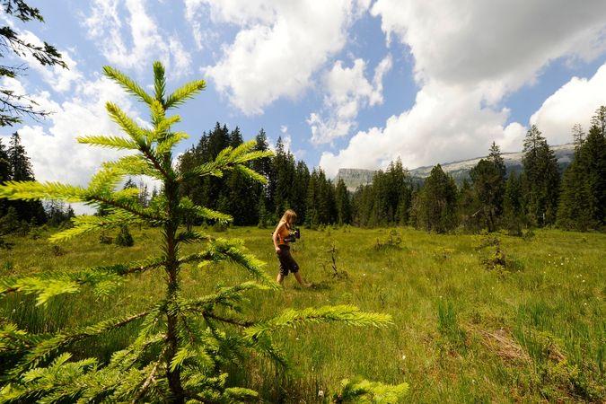 Moorlandschaftspfad UNESCO Biosphäre Entlebuch
