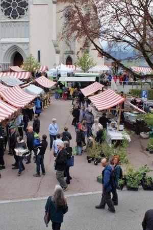 8. Entlebucher Kräuter- und Wildpflanzenmarkt