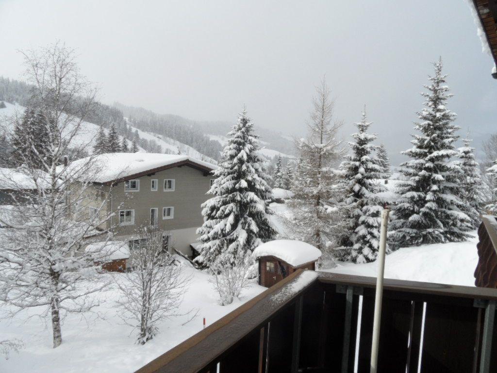 Ferienwohnung Montana / Fam. Völzgen